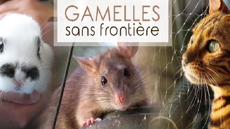 Interview Association : Association GAMELLES SANS FRONTIERE